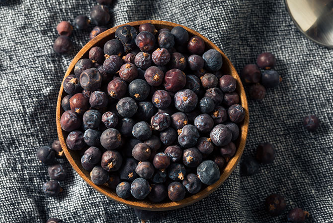 Learn About Juniper Berries