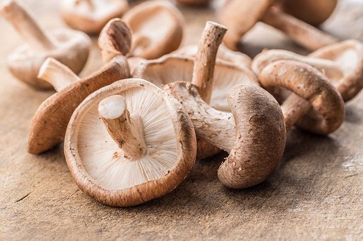 Learn About Shiitake Mushrooms