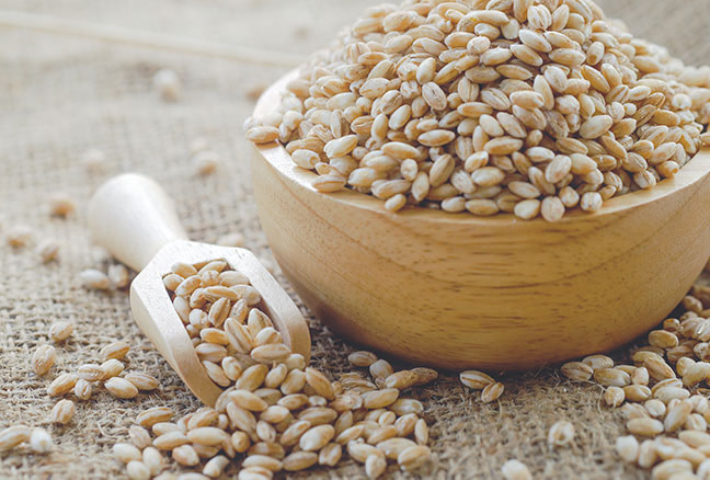 Learn About Barley